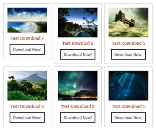 test-example-download-grid