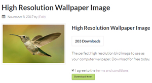 download-bird-image-simple-download-monitor