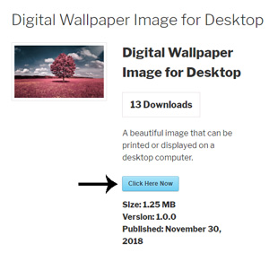 custom-button-for-download-monitor-plugin