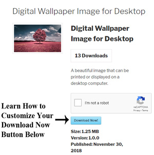 customize-download-button